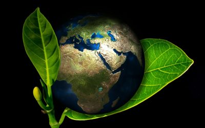 Do planet and profit need to be at odds?